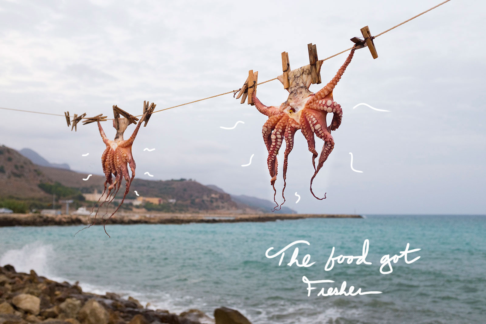 octopus-Blend-travel_photo_39