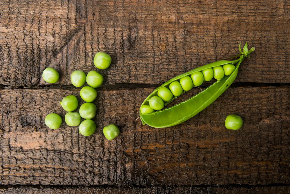 Blend-Images-Pantone-Greenery-Peas-In-A-Pod-Pictures-for-sale